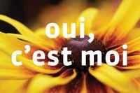 6_oui_cest_moi