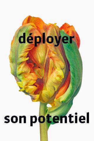 Deployer3