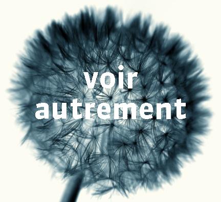 Voir_autrement