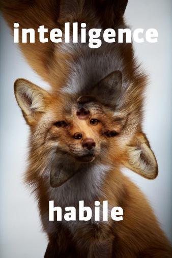Intelligence_habile