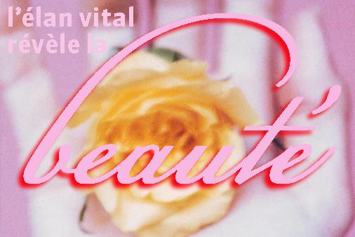 Élan_beauté2